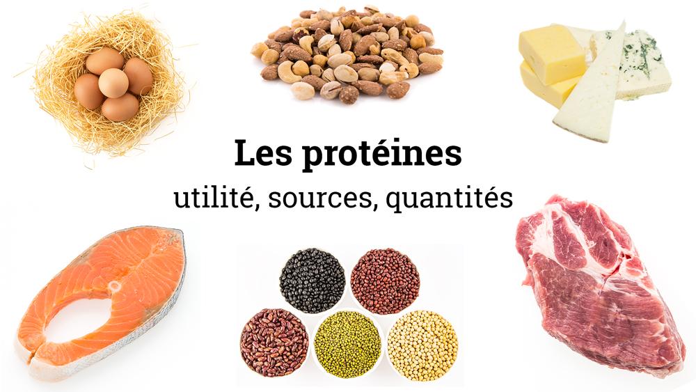 Sources alimentaires de protéines